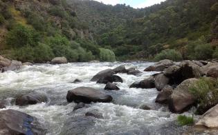 Resultado de imagem para plano nacional da água
