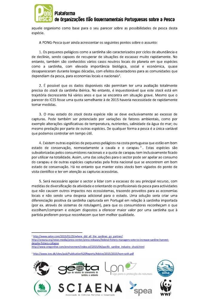 ci_sardinha_alargado_pong-pesca_page_2