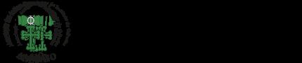 logo AAAIO